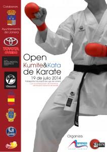Cartel Campeonato LLanera v2