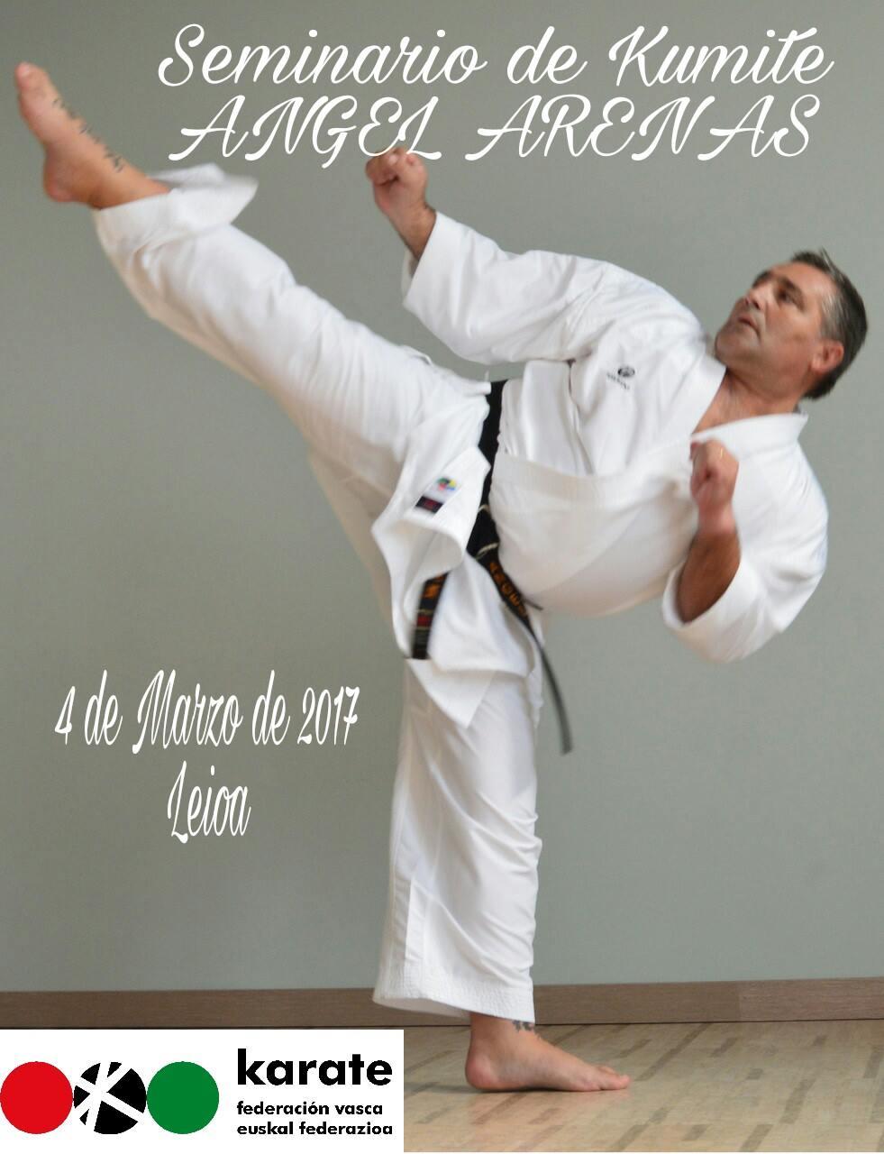 Curso de Karate para la Federación Vasca